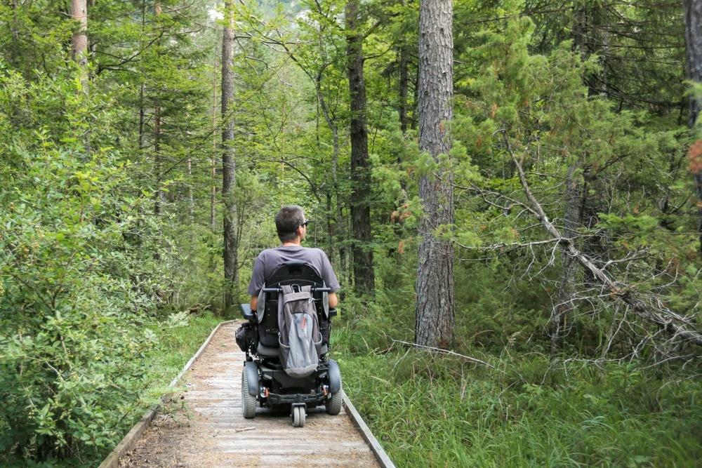 Significado de quadriplegia